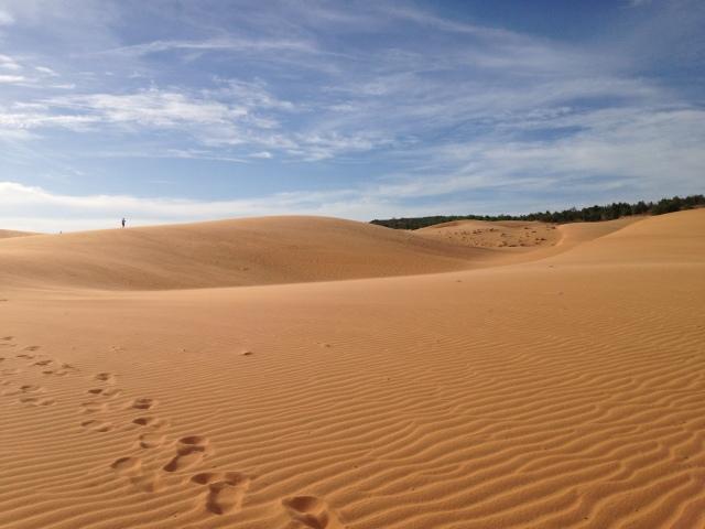Les dunes de Mui Ne